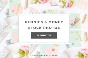 preview-peonies-and-money