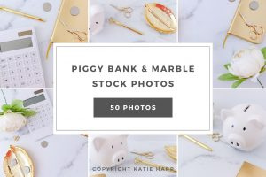 preview-piggy-bank-and-marble